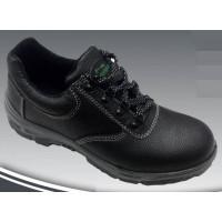 Zapato Workman
