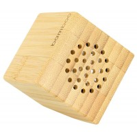 USB Parlant de Bamboo